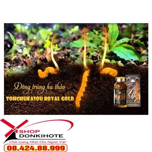 Thành phần đông trùng hạ thảo Tohchukasou Royal Gold Nhật Bản