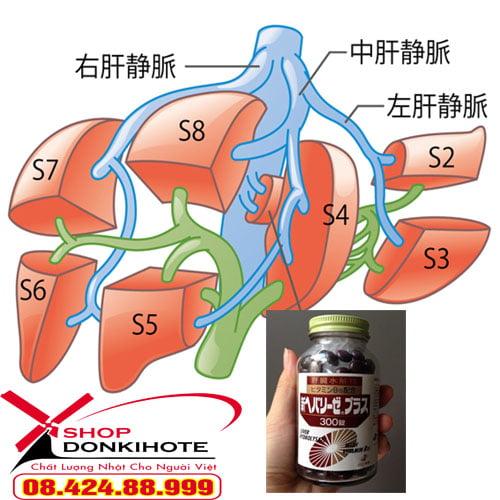 Thuốc bổ gan tốt nhất Nhật Bản